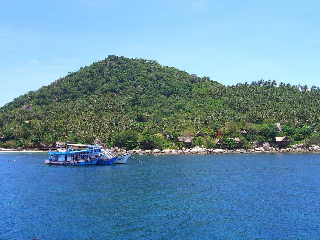 Le site de Koh Tao est idéal pour la plongée en Thaïlande. Les débutants peuvent s'initier à la plongée dans des eaux peu profondes. © permanently scatterbrained, Flickr, cc by 2.0
