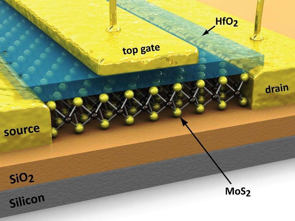 Un schéma montrant un transistor formé d'une couche de MoS2. © EPFL