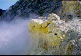 Concretion de soufre, sur l'île BlancheCrédits : Jeffrey F Brown