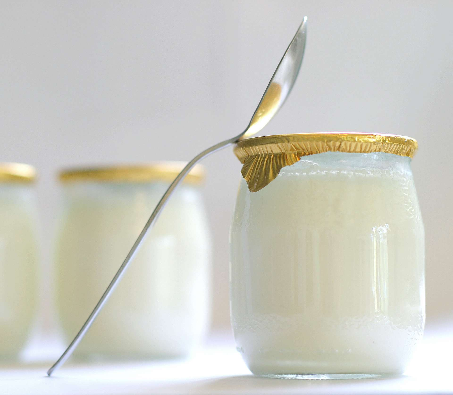 Stamen Grigorov a identifié la bactérie responsable de la fermentation lactique utilisée dans les yaourts. © Chantal, Adobe Stock