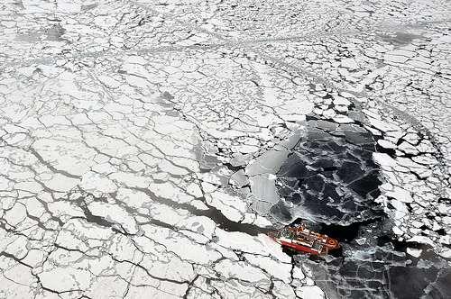En Arctique, une partie de la mer est recouverte de banquise. © US Ecological Survey, Flickr, cc by 2.0