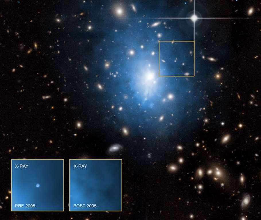 Une image composite de l'amas de galaxies Abell 1795 montre en bleu ses émissions de rayons X vues par Chandra et surimposées à celles dans le visible observées par le télescope Canada-France-Hawaï. En bas à gauche, les observations de Chandra montrent une galaxie naine dans laquelle une source brillante de rayons X est bien visible avant 2005, mais cesse de l'être après. Il s'agirait des émissions du disque d'accrétion d'un trou noir intermédiaire ayant disloqué une étoile et avalant son gaz. © Pour les images en rayons X : Nasa, CXC, University of Alabama, W. P. Maksym et al., CXC, GSFC, UMD, D. Donato et al. ; pour les images d'Abell 1795 dans le visible : CFHT