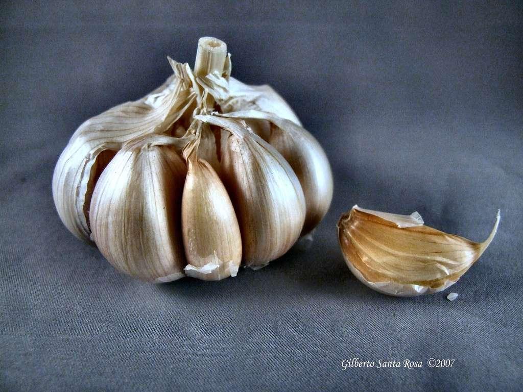 L'ajoène, un composé présent en petites quantités dans l'ail, possède des propriétés antibactériennes. © SantaRosa OLD SKOOL, Flickr, cc by 2.0