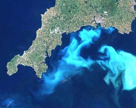 Vastes concentrations de l'algue Emiliania huxleyi au sud de la Grande-Bretagne, vues par satellite. Crédit Nasa