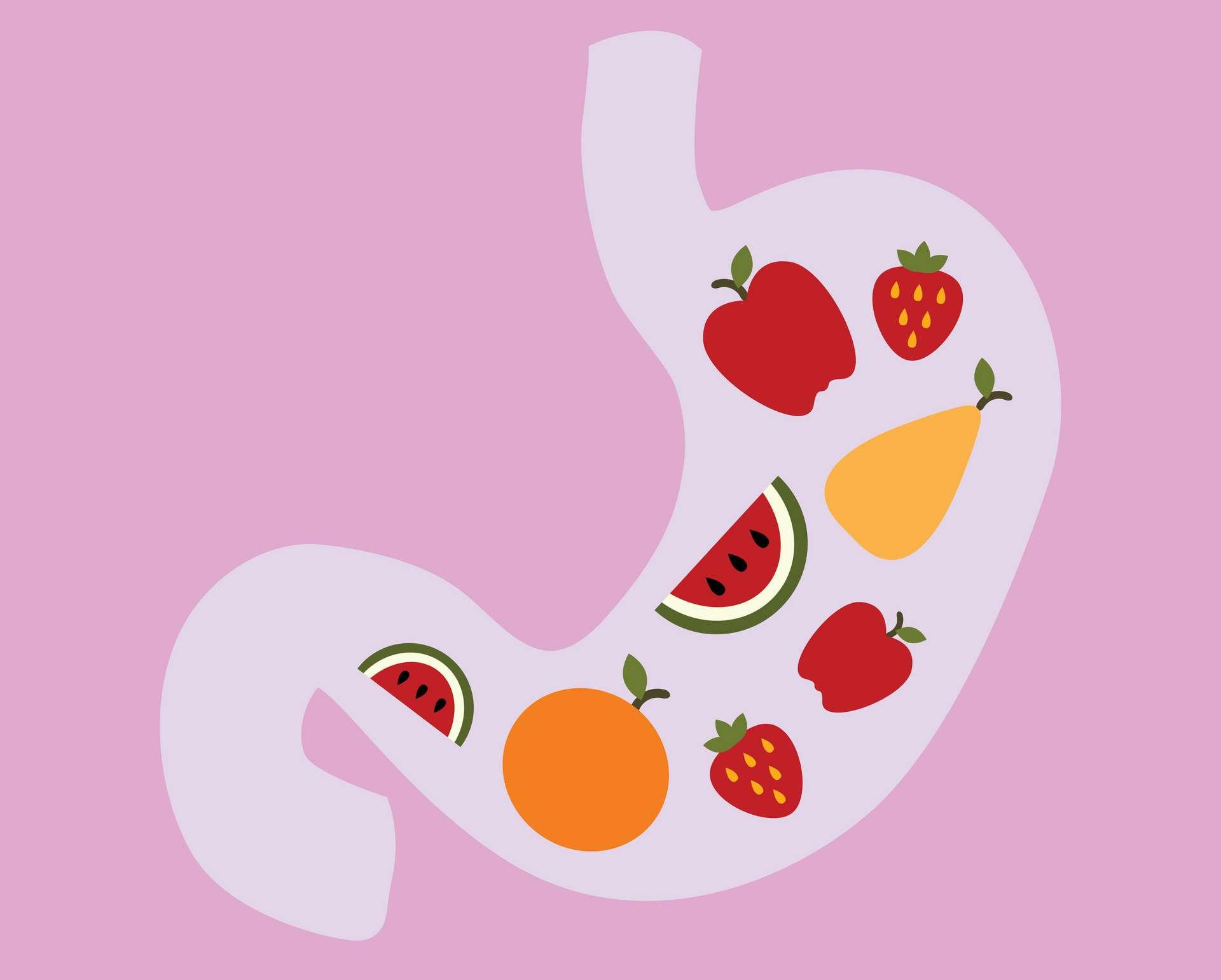 Les fibres contenues dans les légumes, les fruits et les céréales nourrissent les « bonnes » bactéries de l'intestin. © leszekglasner, Adobe Stock