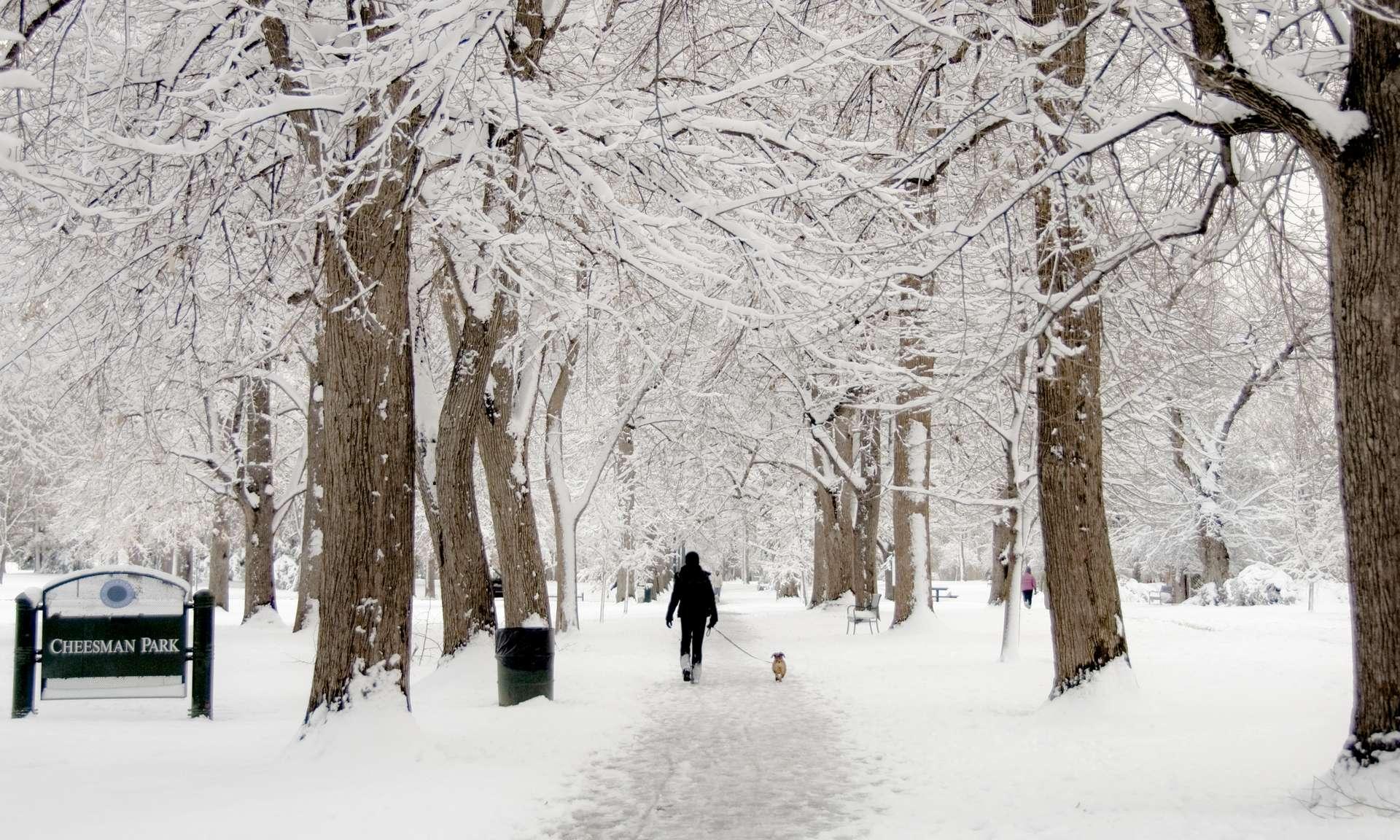 En quelques jours, la ville de Denver est passée d'une vague de chaleur à une vague de froid. © Kim, Adobe Stock