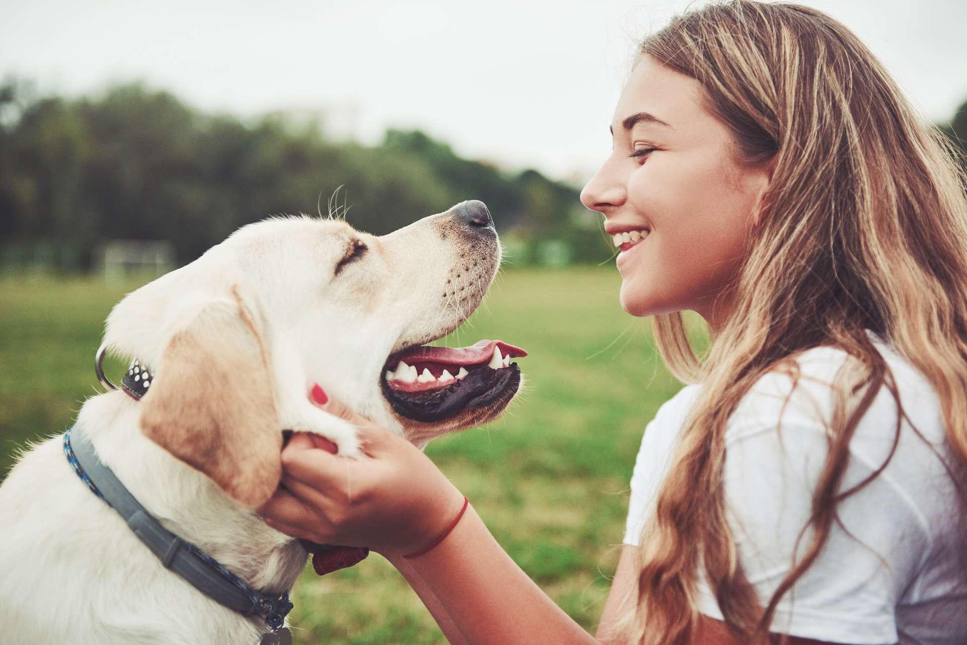 Chien Fait Ses Besoins La Nuit le chien est un grand sentimental et c'est génétique