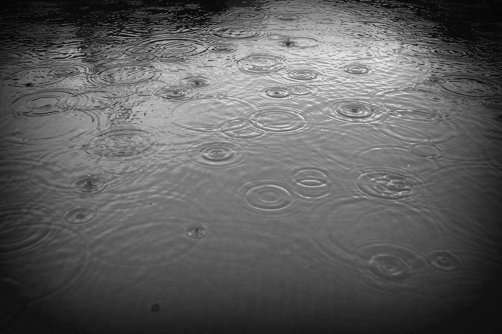 Installer un récupérateur d'eau de pluie est une opération simple et rapide à réaliser. © mxgirl85, Flickr, cc by 2.0