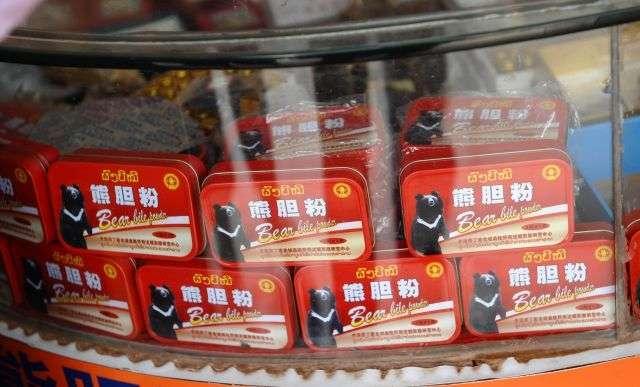 La médecine traditionnelle chinoise propose de nombreux remèdes très différents. Si l'efficacité a pu être prouvée pour certains d'entre eux, d'autres en revanche pourraient avoir des effets toxiques. Qu'en est-il de cette poudre de bile d'ours noir ? © AFP Photos / Hoang Dinh Nam