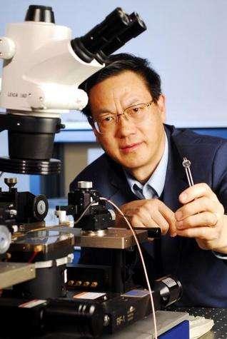 Zhong Lin Wang montre un nanogénérateur de courant électrique constitué de nanofibres d'oxyde de zinc. © Georgia Tech / Gary Meek