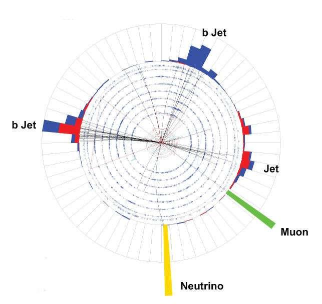 Un exemple de la réaction à un seul quark isolée dans le détecteur DO. Probablement selon le canal du schéma b. Le lepton détecté est un muon et 3 jets hadroniques ont été produits et enregistrés. Crédit : Fermilab