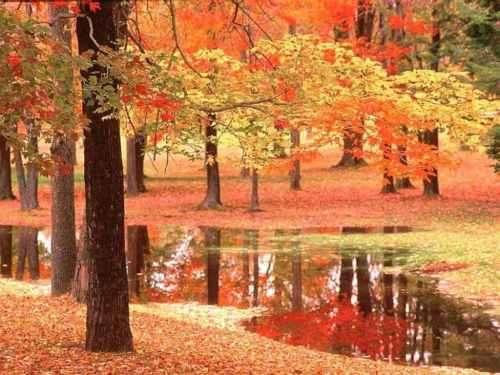 Équinoxe d'automne