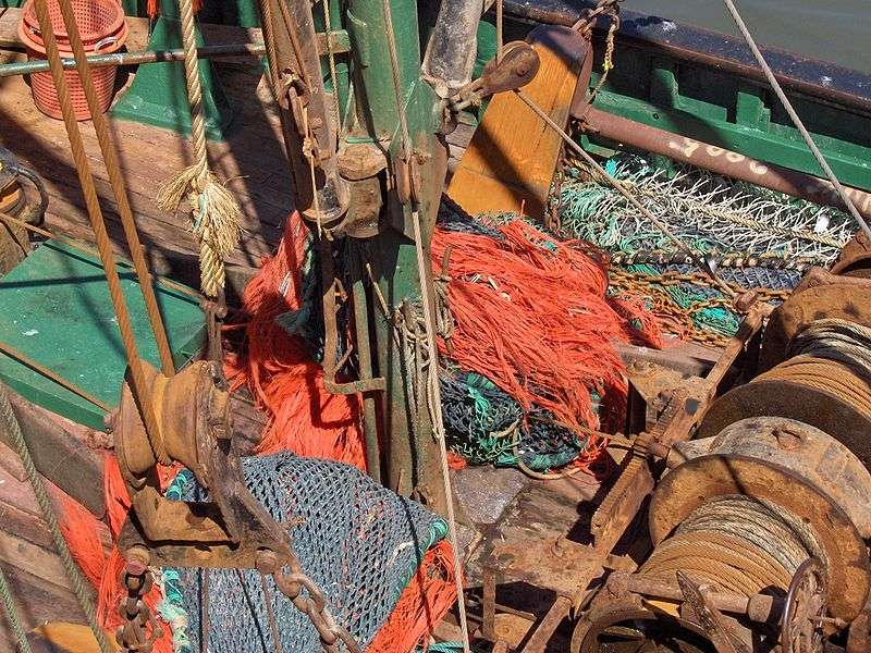 Le tonnage pêché ne rend pas bien compte de l'activité de la pêche. L'effort de pêche est un meilleur indicateur, incluant les moyens engagés. Différents facteurs entrent dans ce paramètre, dépendant de l'échelle que l'on considère (pêcherie, pêches mondiales, régions, flotte de l'entreprise...). © Georges Jansoone, Licence CC
