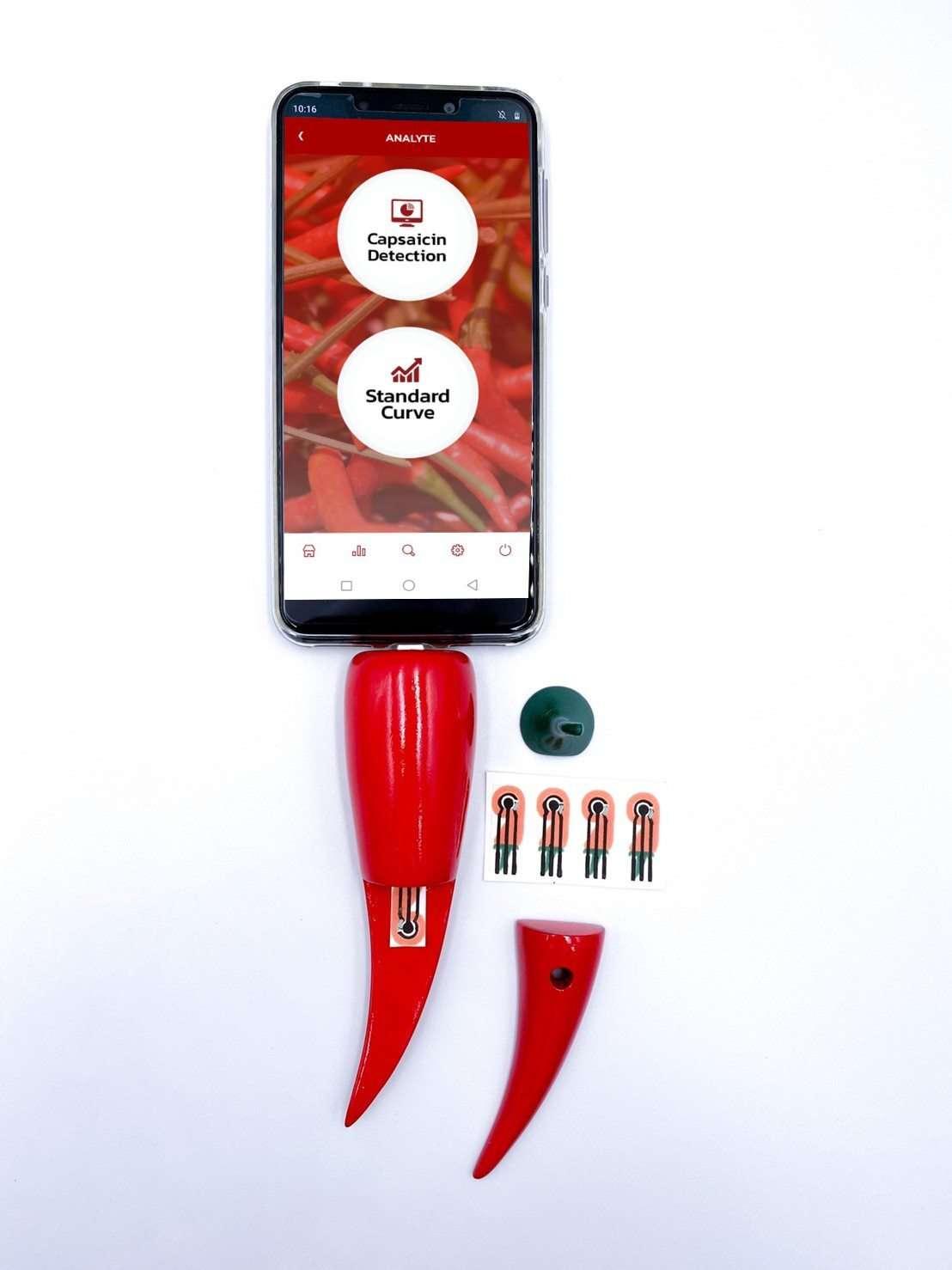 Le dispositif en forme de petit piment se branche au téléphone portable pour analyser la concentration en capsaïcine du piment. © ACS Applied Nano Materials 2020