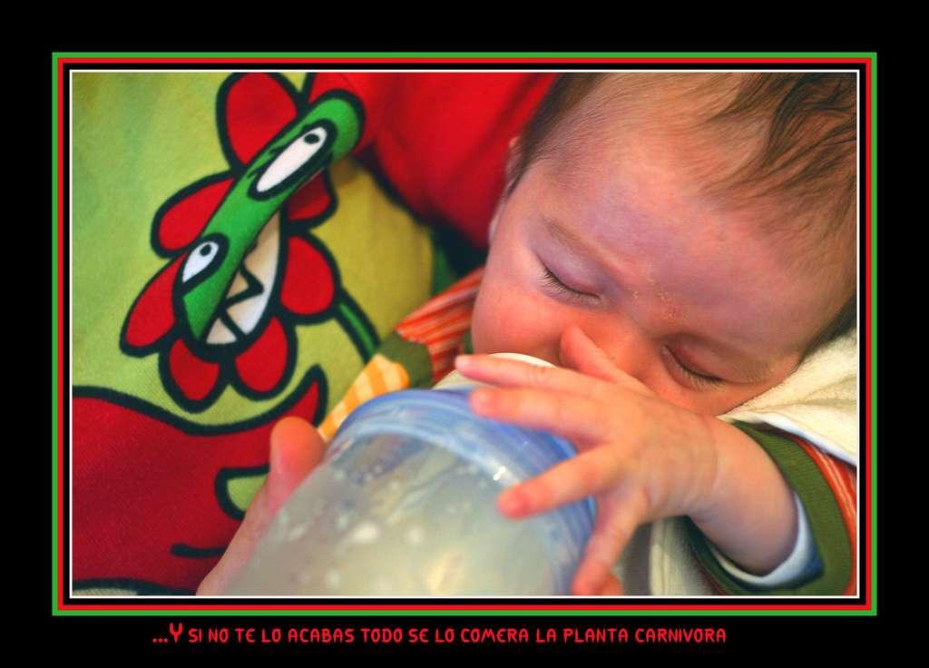 Le retour au biberon en verre et à la logistique qui va avec n'est pas la seule alternative. Il existe des biberons en matière plastique qui ne sont pas fabriqués en polycarbonate et qui ne libèrent donc pas de BPA. © Disgustipado / Flickr - Licence Creative Commons (by-nc-sa 2.0)