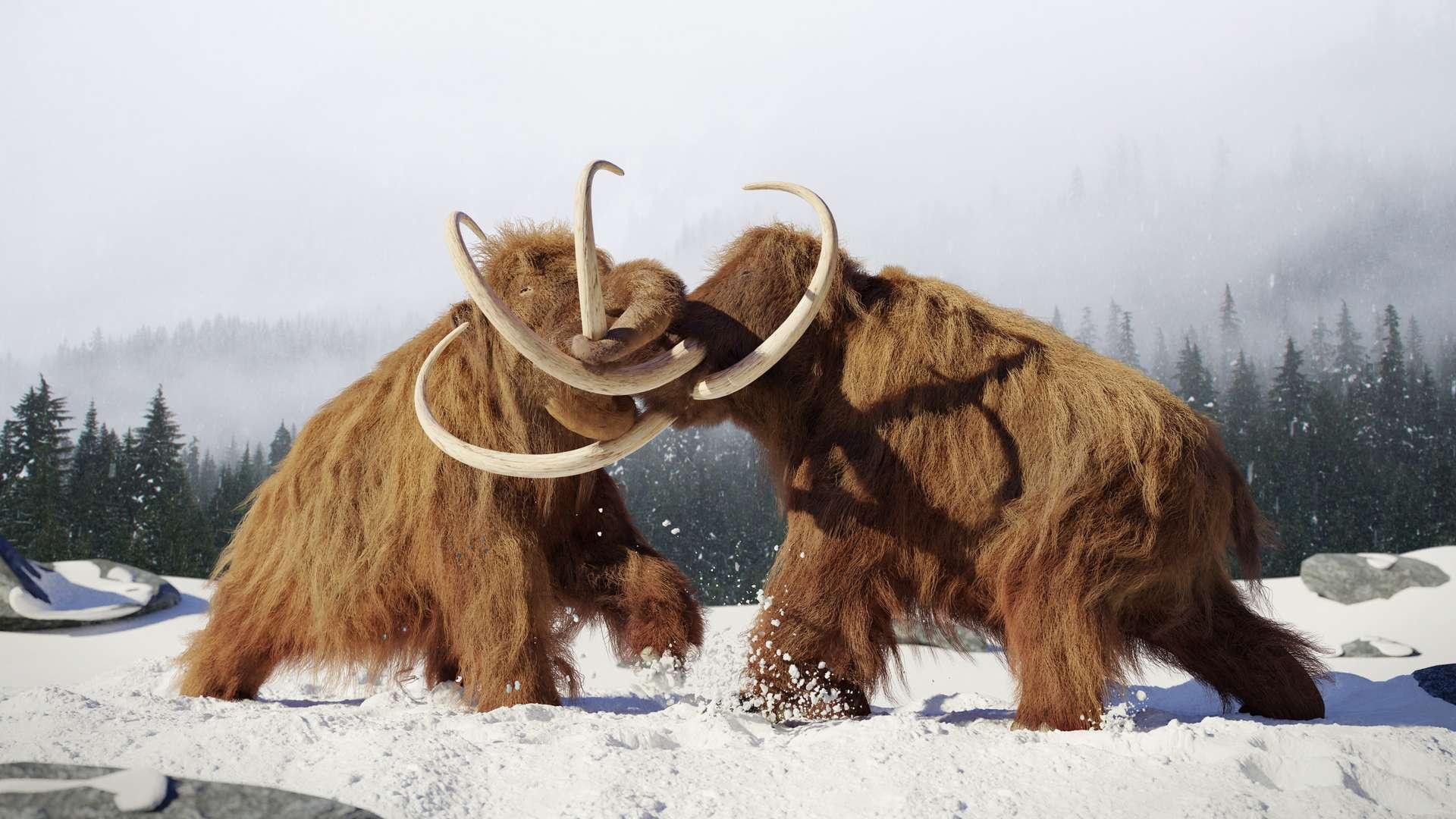 Le mammouth laineux est une espèce éteinte, qui a vécu entre -400.000 et -4.600 ans avant notre ère. © Dottedyeti, Adobe Stock