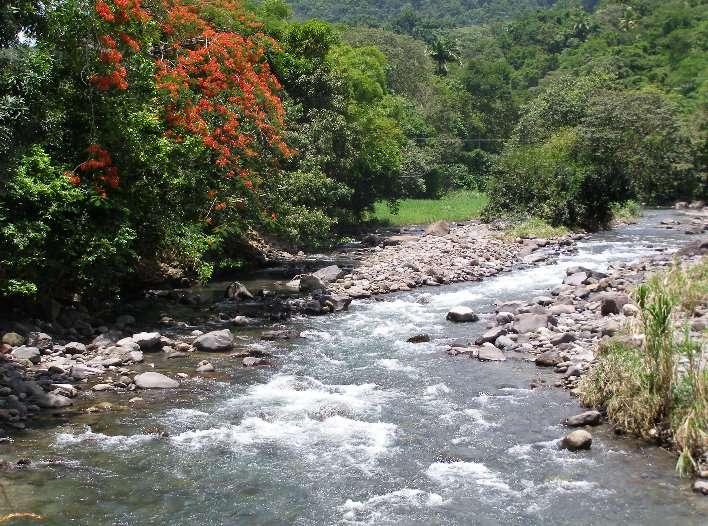 Les rives d'une rivière.© christine.overblog.com