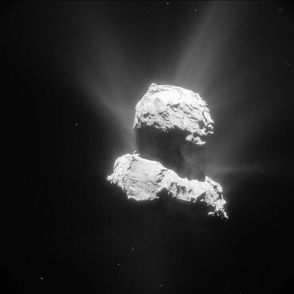 On ne compte plus les jets de poussière émis par le noyau de 67P/Churyumov-Gerasimenko et visibles sur cette photo prise par la caméra de navigation (NavCam) de Rosetta le 26 avril, à 98 km de distance. L'image couvre une aire de 8,6 km. © Esa, Rosetta, NavCam, CC by-sa 3.0 igo
