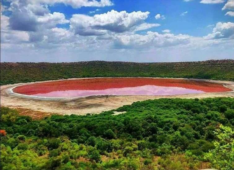 Le lac de Lonar s'est subitement coloré en rose sous l'effet de la salinité et des algues. © Lonar Crater, Twitter