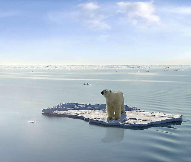 Les premiers signes de réchauffement climatique auraient été notés dès les années 1940 dans certaines parties du globe. © Gerard Van der Leun, Flickr, CC by-nc-nd 2.0