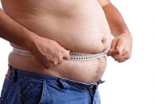 L'obésité est due à un déséquilibre entre les apports nutritionnels et la dépense énergétique. Un traitement possible consisterait à activer la formation de tissu adipeux brun capable de consommer des graisses. © Fj.toloza992, Wikimedia Commons, cc by sa 3.0