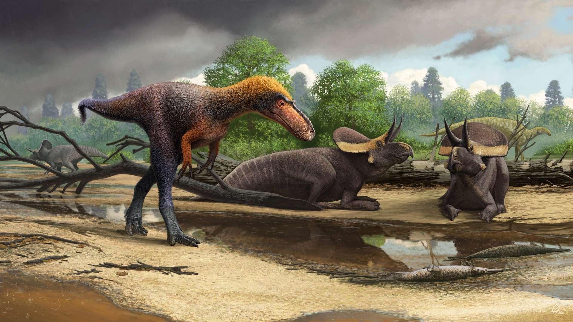 Vue d'artiste de Suskityrannus hazelae, une nouvelle espèce appartenant à la super-famille des Tyrannosauroidea qui vivait il y a 92 millions d'années, durant le Crétacé, et précédait le Tyrannosaurus rex. © Andrey Atuchin