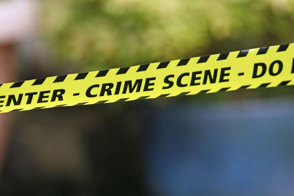 Parfois, sur certaines scènes de crimes, il est important de déterminer avec précision le jour de la mort afin de retrouver les personnes susceptibles d'avoir été dans la zone à ce moment-là, et donc potentiellement coupables ! © Alan Cleaver, Flickr, cc by 2.0