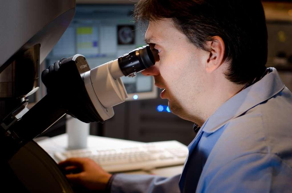 Le cornavirus NCoV est encore loin d'avoir livré tous ses secrets. Les scientifiques tentent de percer à jour tous ces mystères afin de comprendre d'où il vient et comment le combattre. © EMSL, Flickr, cc by nc sa 2.0