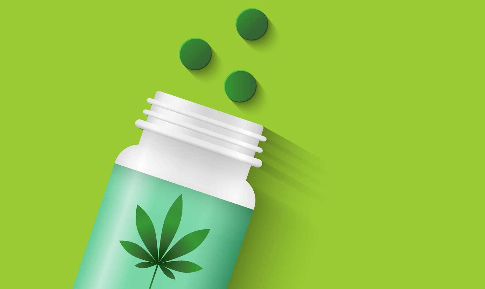 Deux nouvelles molécules antidouleur ont été identifiées dans le cannabis. © lvnl, Fotolia