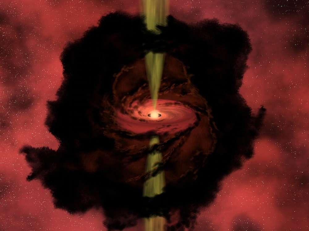 Une vue d'artiste d'une protoétoile enfouie dans un épais nuage de gaz et de poussières. Autour d'elle, cette matière en rotation commence à s'agglutiner : ces agrégats deviendront des astéroïdes, des comètes, des planètes ou des lunes. © Nasa
