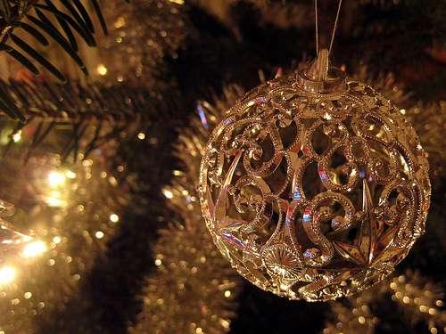 Le choix du sapin de Noël est pour bientôt !© By Fred_v, Flickr, Attribution 2.0 Generic