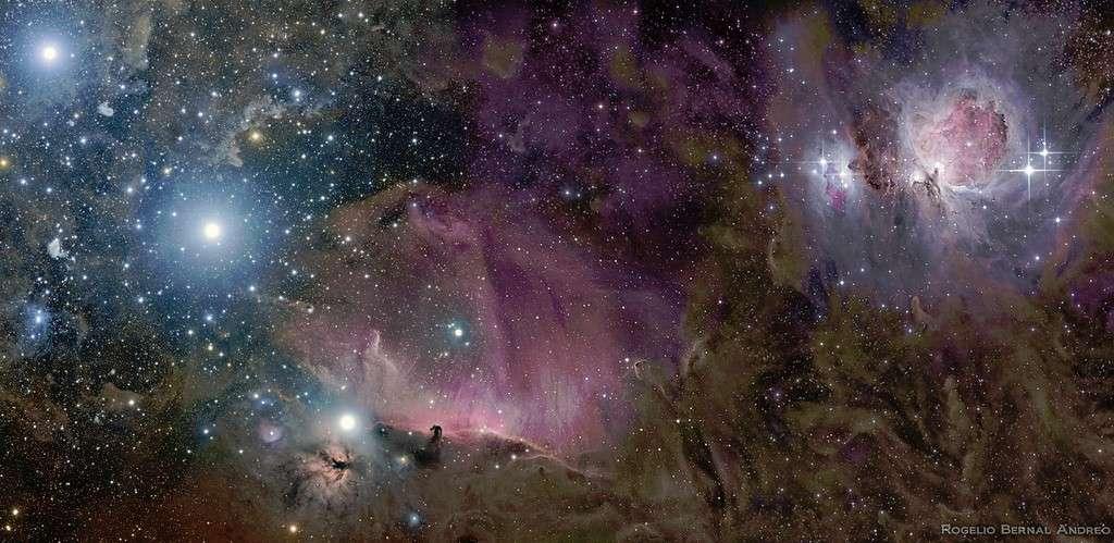 Cette somptueuse image de la constellation d'Orion d'où émerge la nébuleuse de la Tête de cheval a remporté l'an passé le premier prix dans la catégorie ciel profond. © Anthony Ayiomamitis