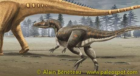 Reconstitution d'une attaque sur un Diplodocus par un Allosaurus. © Alain Bénéteau