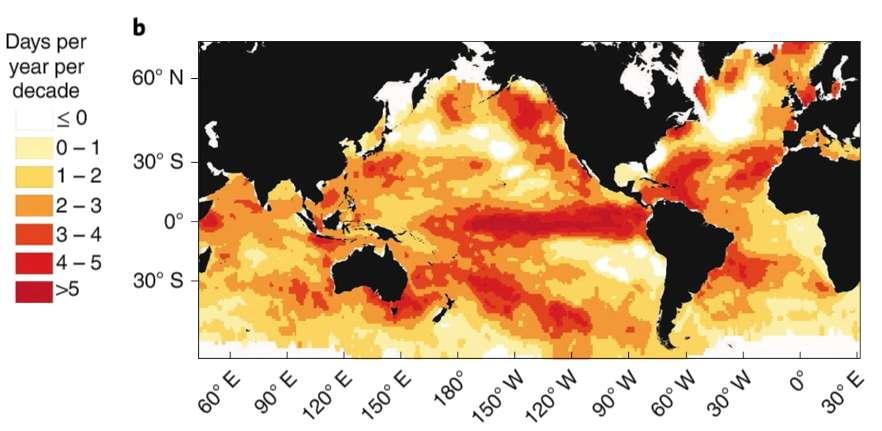 Nombre de jours de canicule par an et par décennie en plus dans les océans entre 1925 et 2016. © Dan Smale et al., Nature Climate Change, 2019
