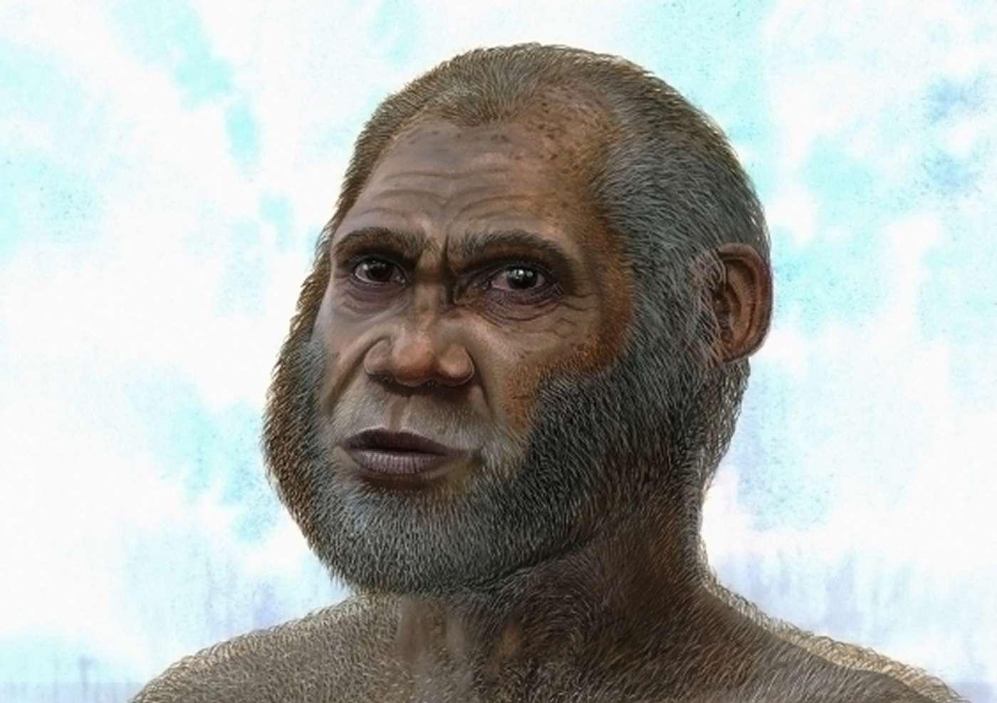 Reconstitution hypothétique de l'Homme de Maludong, daté de 14.000 ans environ, d'après les restes trouvés dans la grotte du cerf rouge (Red Deer Cave, en anglais). Ses traits et les caractéristiques physiques qui sont repérables sur les ossements découverts le rapprochent d'homininés bien plus anciens. © Peter Schouten