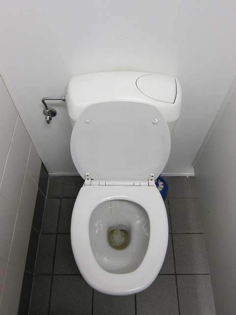 Un sanibroyeur permet d'installer des WC dans des endroits où les tuyaux d'évacuation sont trop petits. © Arnaud Crucifix, CC BY-NC-SA 2.0, Flickr