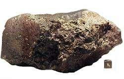 météorite martienne ALH84001