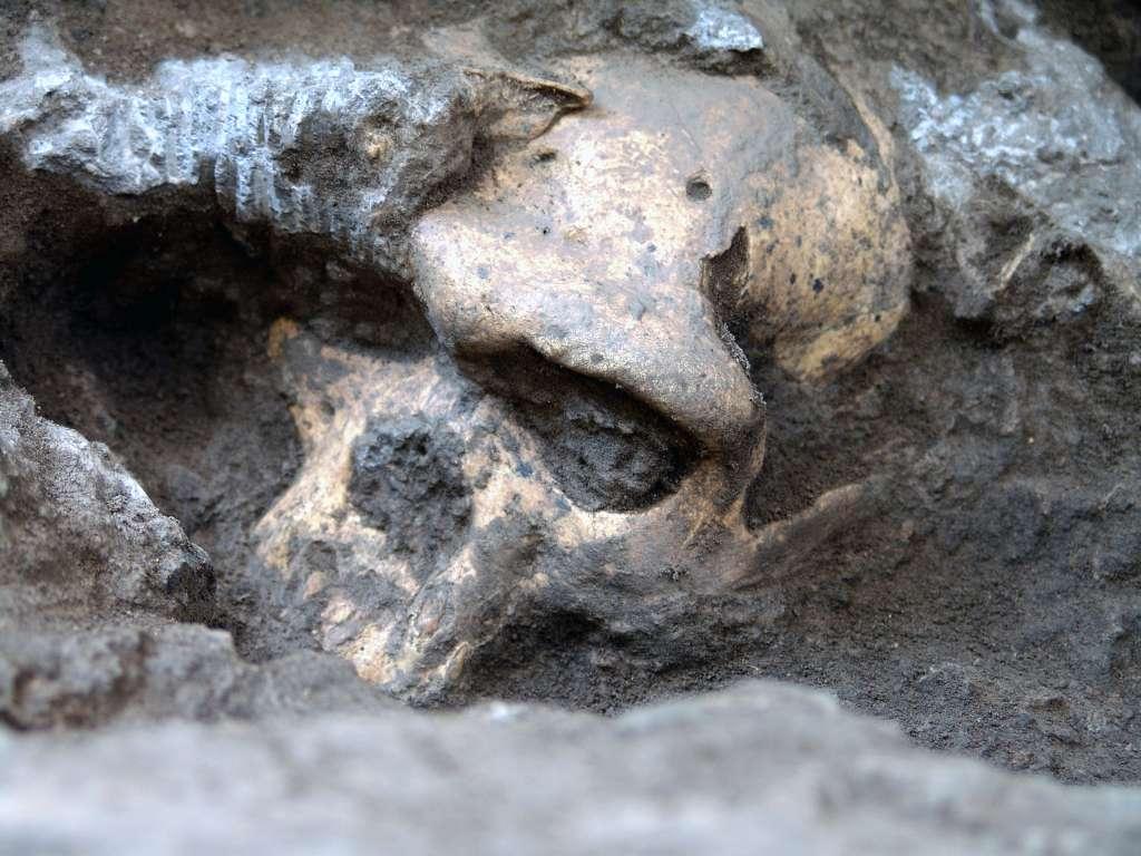 Le site archéologique de Dmanisi, où le crâne Skull 5 a été trouvé (à l'image), est situé à 75 km de la capitale géorgienne Tbilissi. Des fouilles y sont menées depuis les années 1960. © Muséum national géorgien