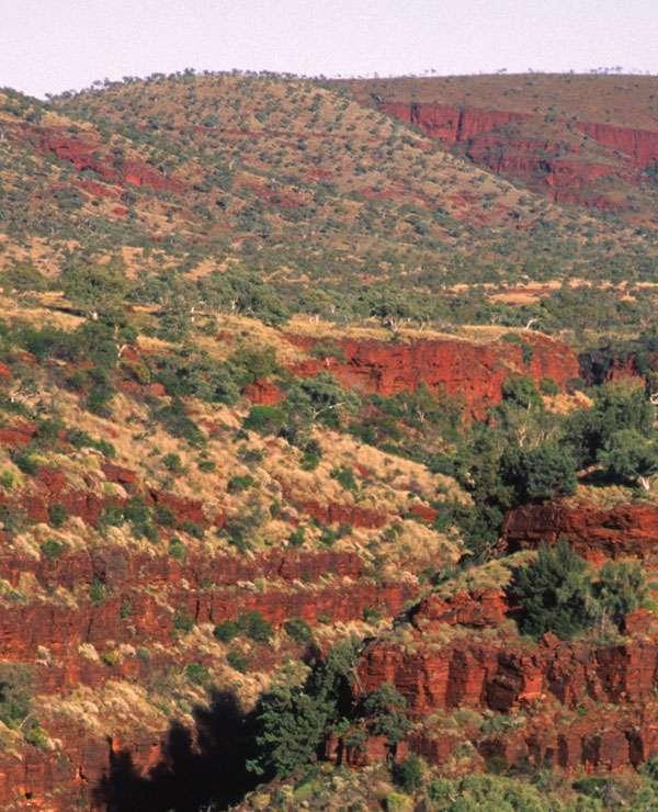 Une vue des formations rubanées de Dales Gorge, au nord ouest de l'Australie, l'une des BIF échantillonnée par Konhauser et ses collègues. Crédit Nature