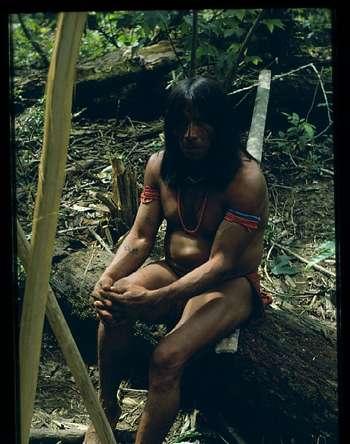 Portrait d'Amérindien de Guyane française. Ils seraient 167.000 individus, répartis en 6 ethnies dans le pays. © Georges Larrouy