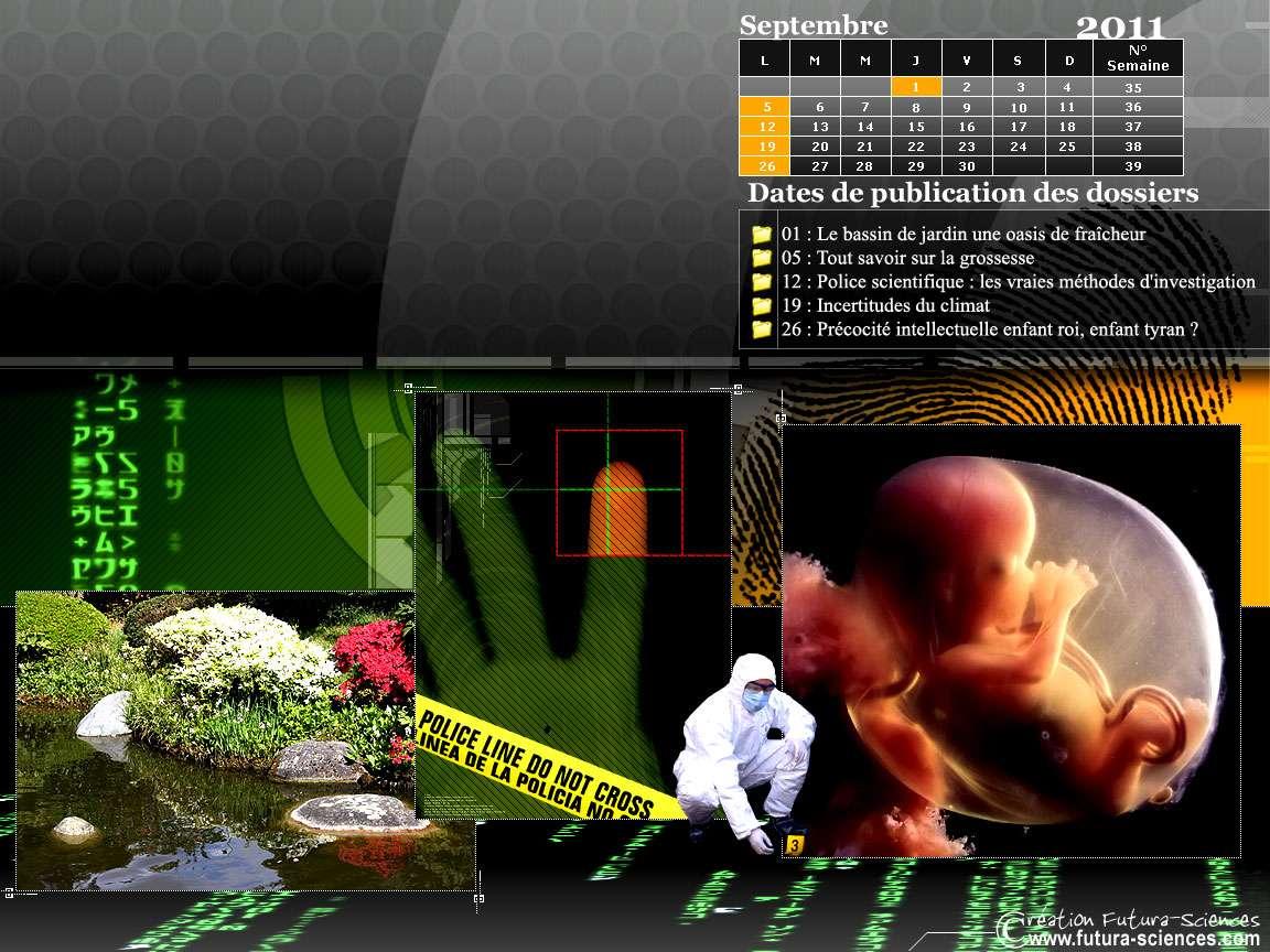 Les dossiers du mois de septembre sur Futura-Sciences. © Futura-Sciences