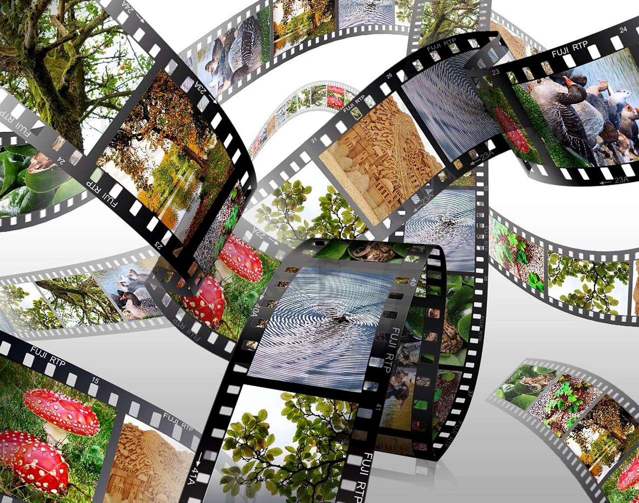 Créer son album photo à partir de photos numériques