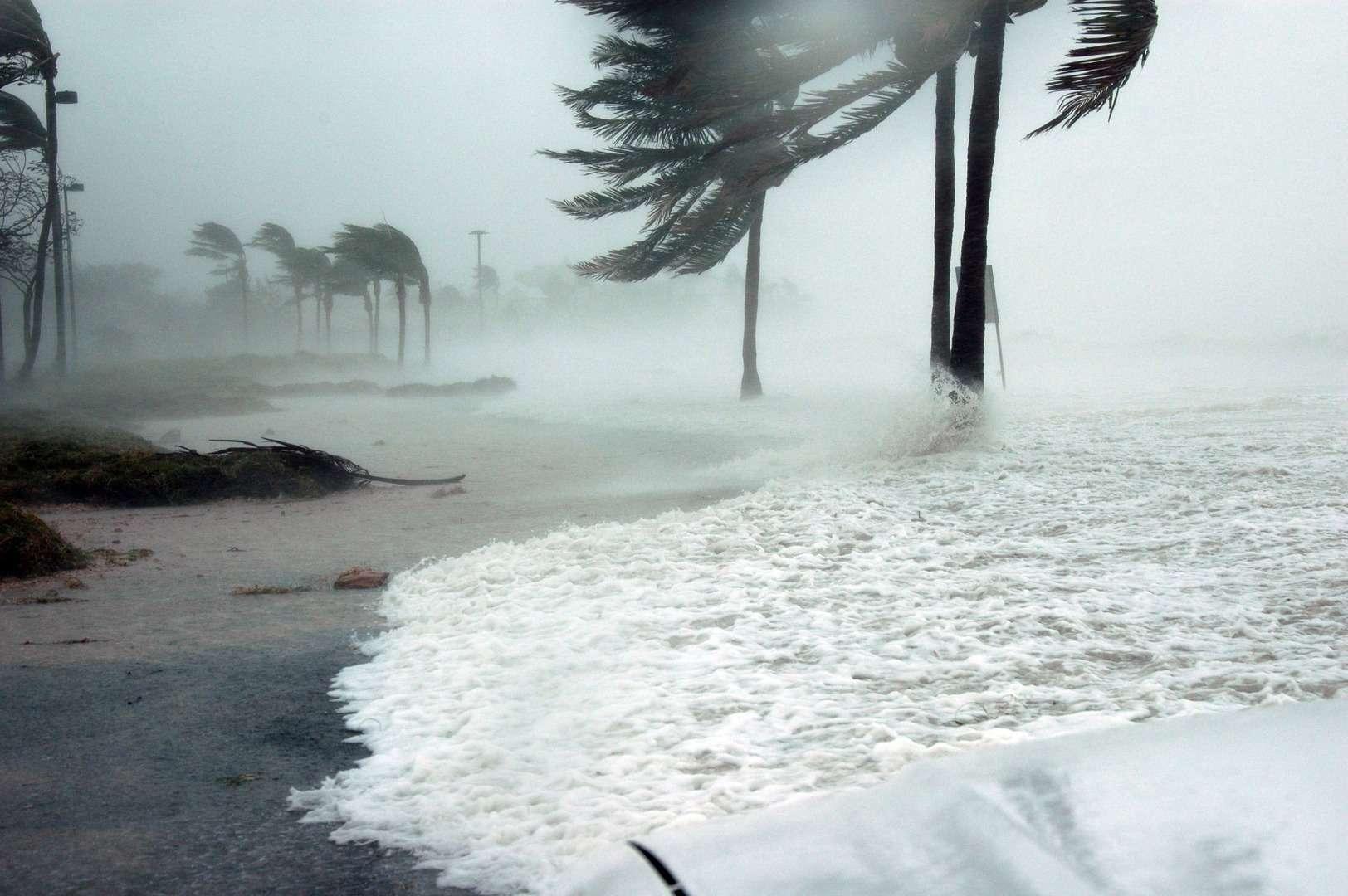 Les fortes vagues et les vents violents se sont renforcés depuis 1985, de façon plus marquée pour l'océan Austral, accroissant les risques de submersion pour les côtes de l'hémisphère sud. © DP
