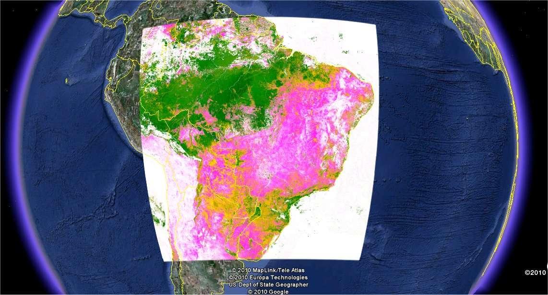 Exemple d'analyse réalisée avec Google Earth Engine, montrant la proportion de végétation. © Google
