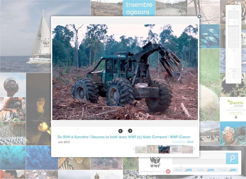 Une campagne du WWF contre les déforestations en régions tropicales. © WWF