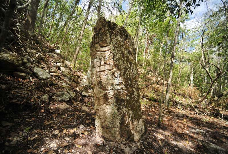 Les glyphes gravés sur les stèles dressées Maya servaient essentiellement à glorifier les rois, par exemple en rapportant des événements marquants de leurs règnes. © Inah