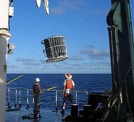 Recherche et collecte de bactéries dans le Pacifique sud à bord du navire scientifique Kilo Moana. Crédit Jonathan Zehr