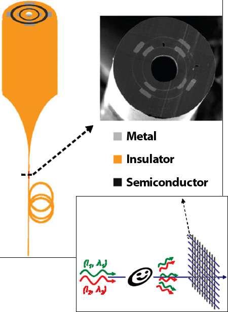 Des capteurs sont installés dans chacune des seize fibres optiques, selon une symétrie radiale. La fibre elle-même fait office de matériau diélectrique (insulator), c'est-à-dire résistant au passage du courant électrique. Les parties grises, métalliques, sont les conducteurs reliant les composants en matériau semi-conducteur. Cette structure capte la lumière et détecte aussi la direction de la source lumineuse. L'image d'un smiley a pu être reconstituée par l'analyse des signaux reçus. © Sorin et al., Nano Letters, Online edition (2009)