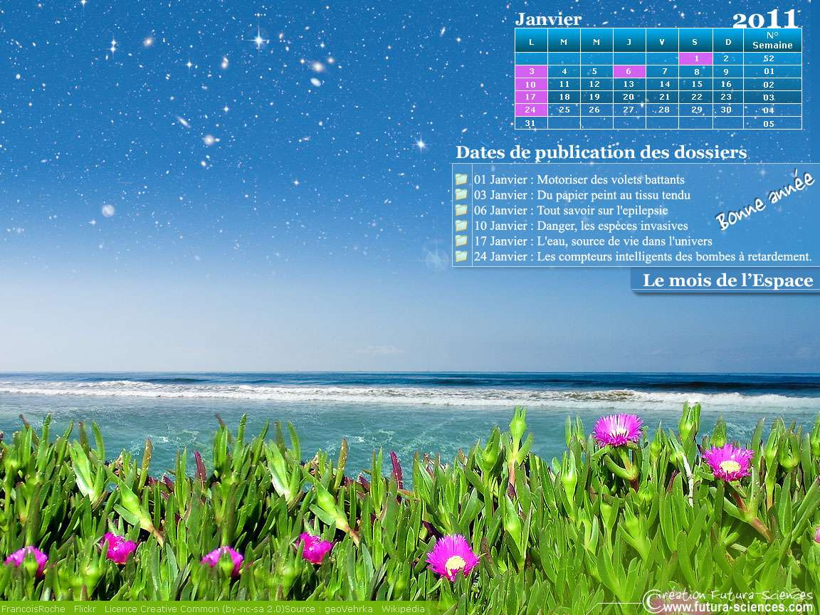 Le calendrier du mois de janvier. © Futura-Sciences