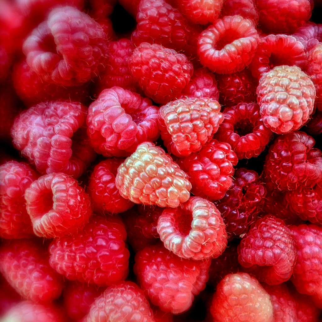 Environ 1,7 million de vies pourraient être épargnées chaque année si nous mangions suffisamment de fruits et légumes (source : OMS). © Ametxa, Flickr, CC by-nc-nd 2.0